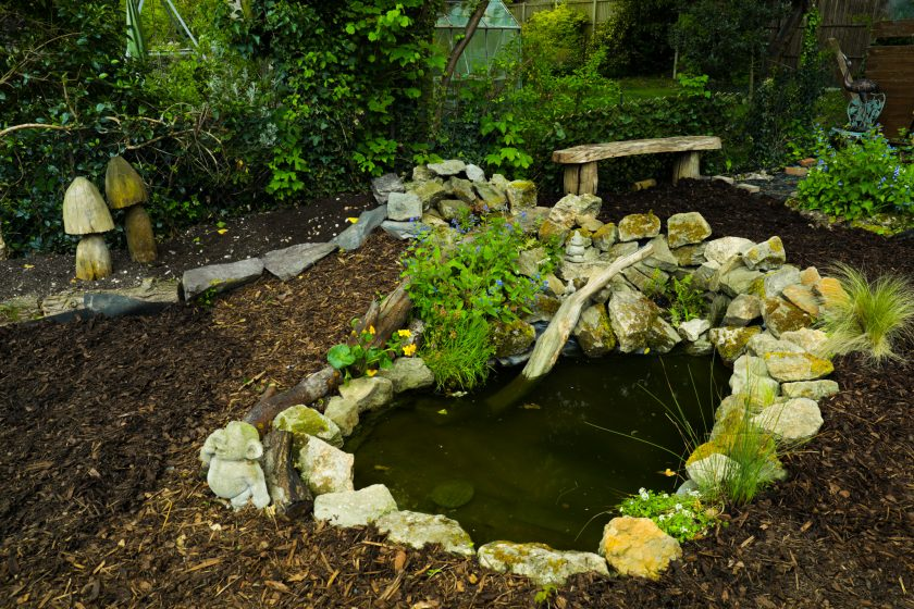 Garden Pond Coming Together